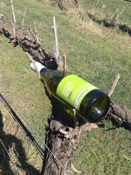 Cowra Wine & Forage