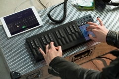 roli-blocks3