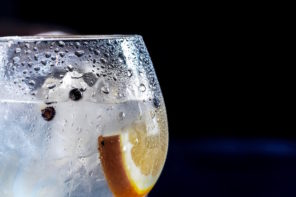 David Bromige – Martin Miller's Gin