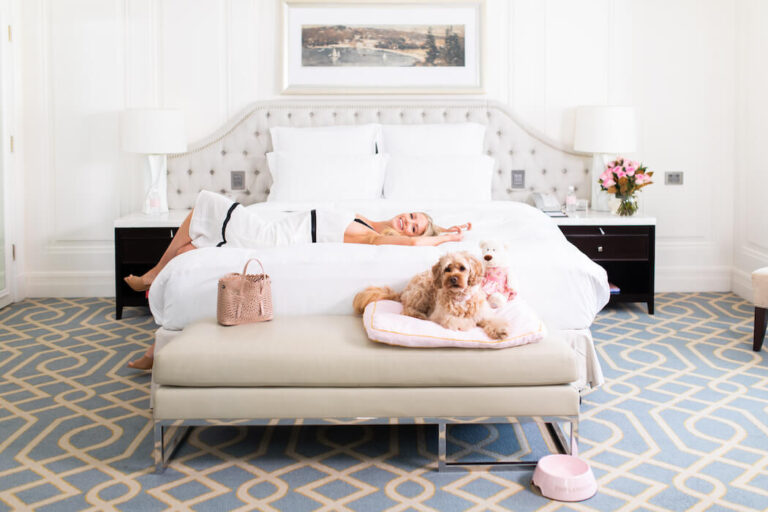 Pampered pets staycation at The Langham Sydney