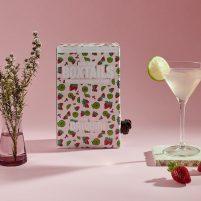 Basic Babe Boxtails | Pink Gin Daiquiri